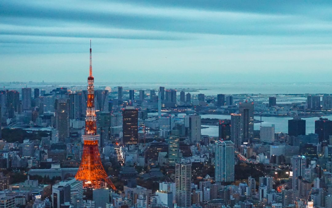 Registration of Affirmative Investment Management Japan Inc successfully completed using FMEO